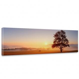 Leinwandbild Sonnenaufgang Baum Natur Feld | no. 238