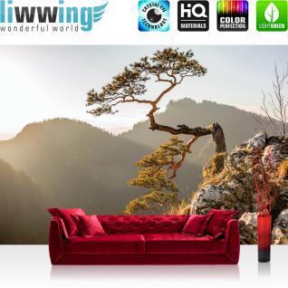 liwwing Vlies Fototapete 368x254cm PREMIUM PLUS Wand Foto Tapete Wand Bild Vliestapete - Berge Tapete Felsen Nadelbaum Sonnenaufgang Gebirge natural - no. 3353