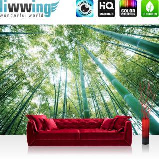 liwwing Vlies Fototapete 300x210 cm PREMIUM PLUS Wand Foto Tapete Wand Bild Vliestapete - Wald Tapete Wald Bäume Himmel Bambus Natur grün - no. 410