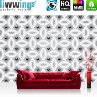 liwwing Vlies Fototapete 312x219cm PREMIUM PLUS Wand Foto Tapete Wand Bild Vliestapete - 3D Tapete Abstrakt Oval Kreise Kugeln Illustration schwarz weiß - no. 2262