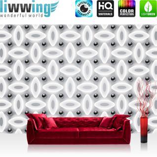 liwwing Vlies Fototapete 416x254cm PREMIUM PLUS Wand Foto Tapete Wand Bild Vliestapete - 3D Tapete Abstrakt Oval Kreise Kugeln Illustration schwarz weiß - no. 2262