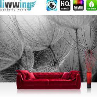 liwwing Vlies Fototapete 400x280 cm PREMIUM PLUS Wand Foto Tapete Wand Bild Vliestapete - 3D Tapete Abstrakt Treppe Kugel Orchidee Blume Blüte 3D grau - no. 855