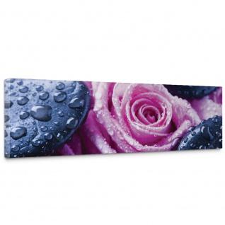 Leinwandbild Steine Rosen Wasser Tropfen Blüten | no. 1608