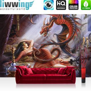 liwwing Vlies Fototapete 312x219cm PREMIUM PLUS Wand Foto Tapete Wand Bild Vliestapete - Illustrationen Alchemy Tapete Drachen Prinzessin Hexe Lilith Dämon bunt - no. 3503