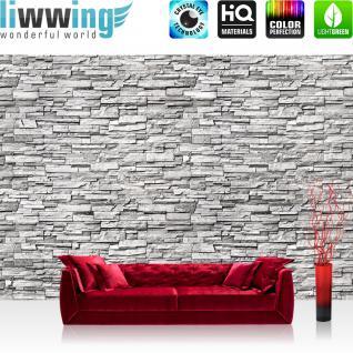 liwwing Vlies Fototapete 350x245 cm PREMIUM PLUS Wand Foto Tapete Wand Bild Vliestapete - Noble STONE WALL No. 2 - GREY - Steintapete Wandbild Steinwand Steintapete Asia Stone Asien - no. 144
