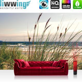 liwwing Fototapete 368x254cm PREMIUM Wand Foto Tapete Wand Bild Papiertapete - Meer Tapete Schilf Küste Ostsee - Nordsee Wellen natural - no. 3441