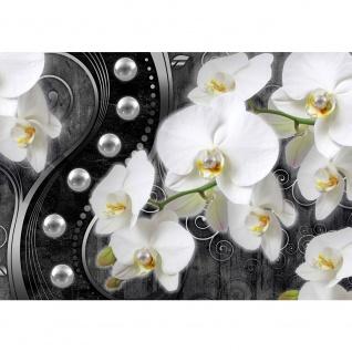 Fototapete Orchideen Tapete Blume Pflanzen Perlen Illustration Ornamente verspielt anthrazit   no. 2025