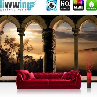 liwwing Vlies Fototapete 312x219cm PREMIUM PLUS Wand Foto Tapete Wand Bild Vliestapete - Landschaft Tapete Bäume Berge Nebel Steinbogen orange - no. 3251