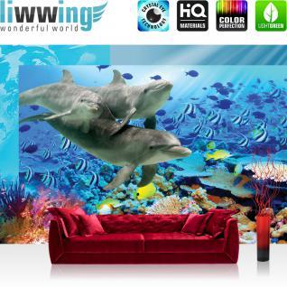 liwwing Vlies Fototapete 416x254cm PREMIUM PLUS Wand Foto Tapete Wand Bild Vliestapete - Meer Tapete Aqua unter Wasser Delfine Fische Natur Wasserpflanzen bunt - no. 2092