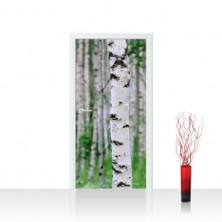 Türtapete - Birch Forest II Birkenwald 3D perspektive Birke Stämme Wald   no. 81