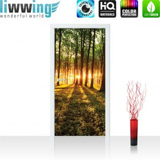 liwwing Türtapete selbstklebend 91x211 cm PREMIUM PLUS Tür Fototapete Türposter Türpanel Foto Tapete Bild - Sonnenuntergang Wald Bäume Wiese - no. 639