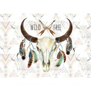 Fototapete Illustrationen Tapete Schädel, Büffel, Federn, Indianer, Wild, Free bunt | no. 3488