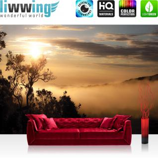 liwwing Vlies Fototapete 416x254cm PREMIUM PLUS Wand Foto Tapete Wand Bild Vliestapete - Landschaft Tapete Bäume Berge Nebel orange - no. 3250