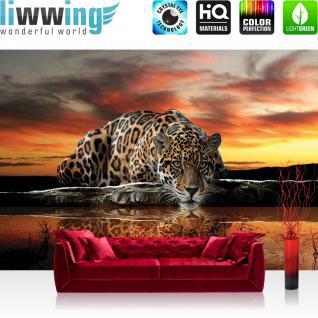 liwwing Vlies Fototapete 350x245 cm PREMIUM PLUS Wand Foto Tapete Wand Bild Vliestapete - Tiere Tapete Jaguar Sonnenuntergang Wasser orange - no. 315