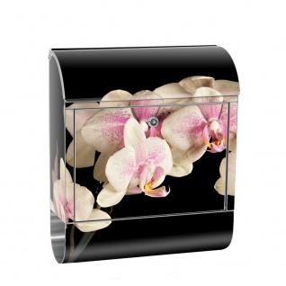 Edelstahl Wandbriefkasten XXL mit Motiv & Zeitungsrolle | Orchidee Blumen Rosa Pink Natur Pflanzen | no. 0104