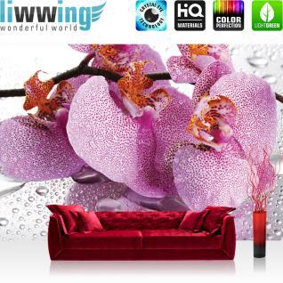 liwwing Fototapete 368x254 cm PREMIUM Wand Foto Tapete Wand Bild Papiertapete - Orchideen Tapete Orchidee Blüte Tropfen lila - no. 526