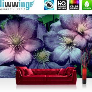 liwwing Vlies Fototapete 312x219cm PREMIUM PLUS Wand Foto Tapete Wand Bild Vliestapete - Blumen Tapete Blume Blüten Blätter lila - no. 1654