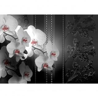 Fototapete Ornamente Tapete Blume Abstrakt schwarz - weiß | no. 1328