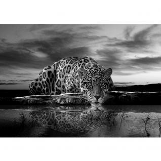 liwwing Vlies Fototapete 350x245 cm PREMIUM PLUS Wand Foto Tapete Wand Bild Vliestapete - Tiere Tapete Jaguar Sonnenuntergang Himmel Wasser schwarz - weiß - no. 614 - Vorschau 2