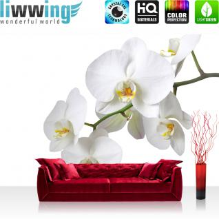 liwwing Vlies Fototapete 104x50.5cm PREMIUM PLUS Wand Foto Tapete Wand Bild Vliestapete - Orchideen Tapete Blume Blüten Orchidee weiß - no. 1568