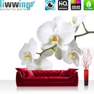 liwwing Vlies Fototapete 208x146cm PREMIUM PLUS Wand Foto Tapete Wand Bild Vliestapete - Orchideen Tapete Blume Blüten Orchidee weiß - no. 1568