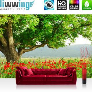 liwwing Vlies Fototapete 350x245 cm PREMIUM PLUS Wand Foto Tapete Wand Bild Vliestapete - A BEAUTIFUL TREE - Natur Mohn Feld Baum Wald Bäume rot grün Idyll - no. 090