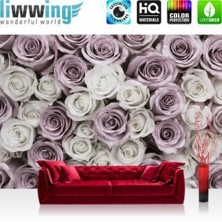 liwwing Vlies Fototapete 312x219cm PREMIUM PLUS Wand Foto Tapete Wand Bild Vliestapete - Blumen Tapete Rose Blume Blüte Pflanze Liebe weiß - no. 2369