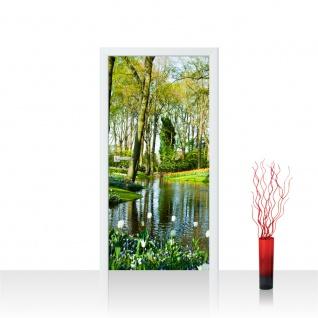Türtapete - Wald Bäume Natur Frühling Wasser Sonne | no. 256