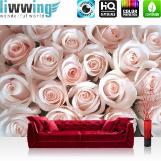 liwwing Vlies Fototapete 350x245 cm PREMIUM PLUS Wand Foto Tapete Wand Bild Vliestapete - Blumen Rose Blüte - no. 185