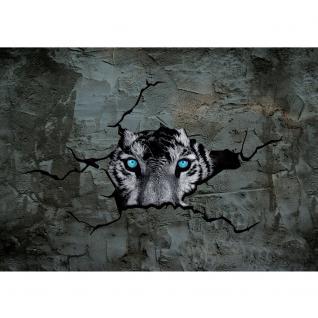 liwwing Vlies Fototapete 208x146cm PREMIUM PLUS Wand Foto Tapete Wand Bild Vliestapete - Natur Tapete Raum Wald Natur Holzwände Holz Scheibe grün - no. 1256 - Vorschau 2