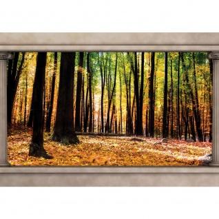 Fototapete Wald Tapete Herbst Bäume Natur Säulen braun | no. 2997