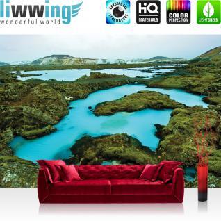 liwwing Vlies Fototapete 312x219cm PREMIUM PLUS Wand Foto Tapete Wand Bild Vliestapete - Landschaft Tapete Island Wasser Berge Natur Stein oliv - no. 2694