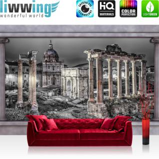 liwwing Vlies Fototapete 416x254cm PREMIUM PLUS Wand Foto Tapete Wand Bild Vliestapete - Religion Tapete Architektur Gebäude Säulen Rom Vintage grau - no. 2020