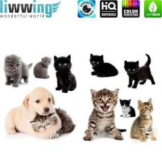 Wandsticker - No. 4752 Wandtattoo Sticker Katze Hund Kätzchen Welpe Hauskatze