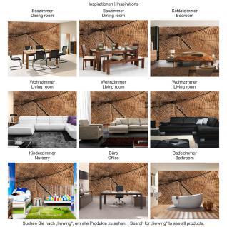 liwwing Fototapete 368x254 cm PREMIUM Wand Foto Tapete Wand Bild Papiertapete - Holz Tapete Stamm Querschnitt Lebensringe Natur braun - no. 2483 - Vorschau 5