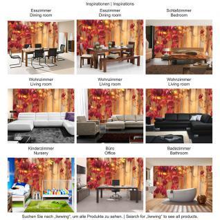 liwwing Fototapete 368x254 cm PREMIUM Wand Foto Tapete Wand Bild Papiertapete - Holz Tapete Holzwand Holzoptik Blätter Herbst Natur rot - no. 532 - Vorschau 5