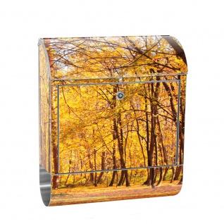 Edelstahl Wandbriefkasten XXL mit Motiv & Zeitungsrolle | Herbstblätter Wald Bäume Baum Forest Herbst | no. 0084