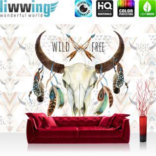 liwwing Vlies Fototapete 416x254cm PREMIUM PLUS Wand Foto Tapete Wand Bild Vliestapete - Illustrationen Tapete Schädel Büffel Federn Indianer Wild bunt - no. 3488