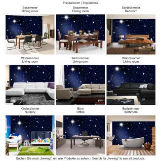 liwwing Vlies Fototapete 350x245 cm PREMIUM PLUS Wand Foto Tapete Wand Bild Vliestapete - A MILLION STARS - Sternenhimmel Stars Sterne Leuchtsterne Nachthimmel- no. 028 - Vorschau 5