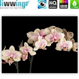 Leinwandbild Creamy Orchid Orchidee Blumen Blumenranke Rosa Pink Natur Pflanzen   no. 104 - Vorschau 4
