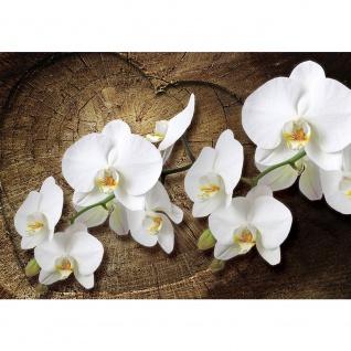 Fototapete Orchideen Tapete Holzstamm Herz Orchideen Blumen weiß   no. 1819