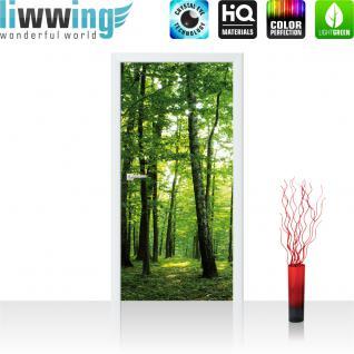 liwwing Türtapete selbstklebend 91x211 cm PREMIUM PLUS Tür Fototapete Türposter Türpanel Foto Tapete Bild - Bäume Wald Sonne Wiese - no. 528