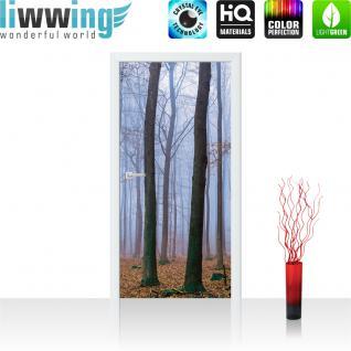 liwwing Vlies Türtapete 91x211 cm PREMIUM PLUS Tür Fototapete Türposter Türpanel Foto Tapete Bild - Bäume Wald Laub Nebel - no. 819