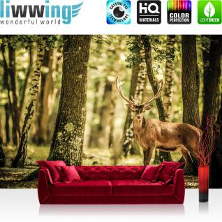 liwwing Vlies Fototapete 208x146cm PREMIUM PLUS Wand Foto Tapete Wand Bild Vliestapete - Tiere Tapete Hirsch Tier Fell Geweih Wald Bäume braun - no. 2486