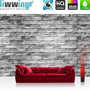 liwwing Vlies Fototapete 416x254cm PREMIUM PLUS Wand Foto Tapete Wand Bild Vliestapete - Steinwand Tapete Stein Steinoptik Steine Wand Wall Steintapete grau - no. 1604