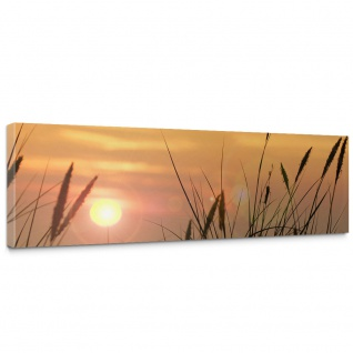 Leinwandbild Sonnenaufgang Sonne Feld Romantisch | no. 206