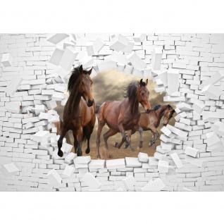 Fototapete Tiere Tapete Pferde, Steinwand, Illustration, Natur braun | no. 3383