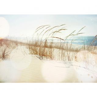 liwwing Vlies Fototapete 350x245 cm PREMIUM PLUS Wand Foto Tapete Wand Bild Vliestapete - Strand Meer Nordsee Ostsee Beach Wasser Blau Himmel Sonne Sommer - no. 148 - Vorschau 2