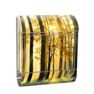 Edelstahl Wandbriefkasten XXL mit Motiv & Zeitungsrolle   Wald Bäume Sonnenstrahlen grün Ruhe   no. 0062