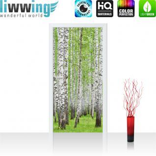 liwwing Vlies Türtapete 91x211 cm PREMIUM PLUS Tür Fototapete Türposter Türpanel Foto Tapete Bild - Birke Wald Bäume - no. 433